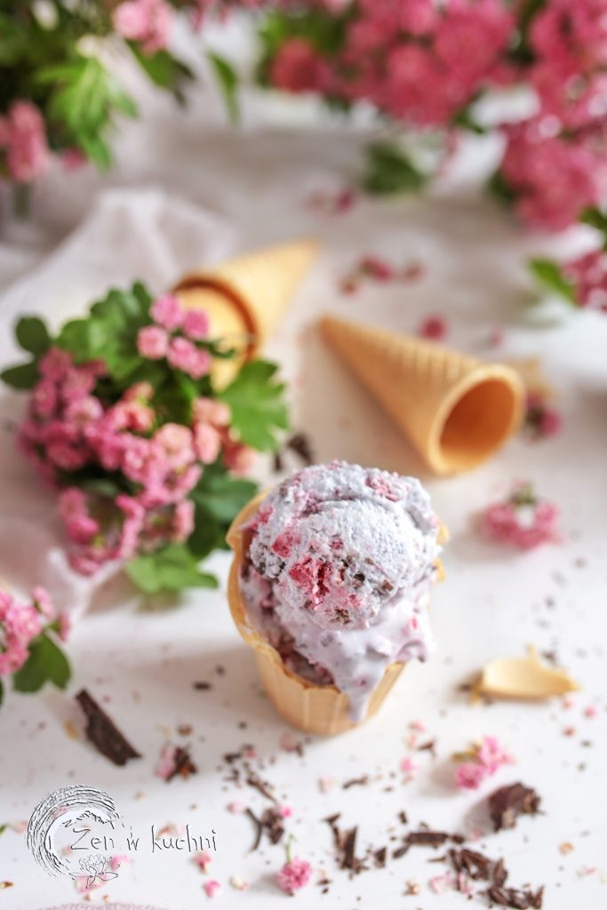 lody śmietankowe z czekoladą i malinami