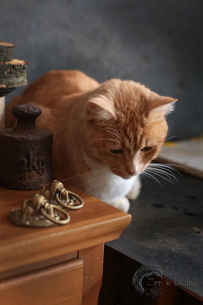 zen w kuchni