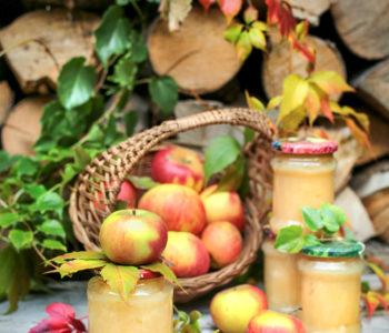 mus jabłkowy